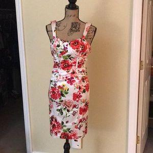 Cache Floral Dress